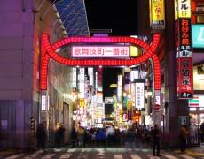 Il distretto più controverso di Tokyo. Un estratto da Kabukicho di Dominique Sylvain
